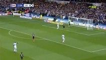 Dwight Gayle Goal - Leeds 0 - 1 Newcastle Utd 20.11.2016 HD