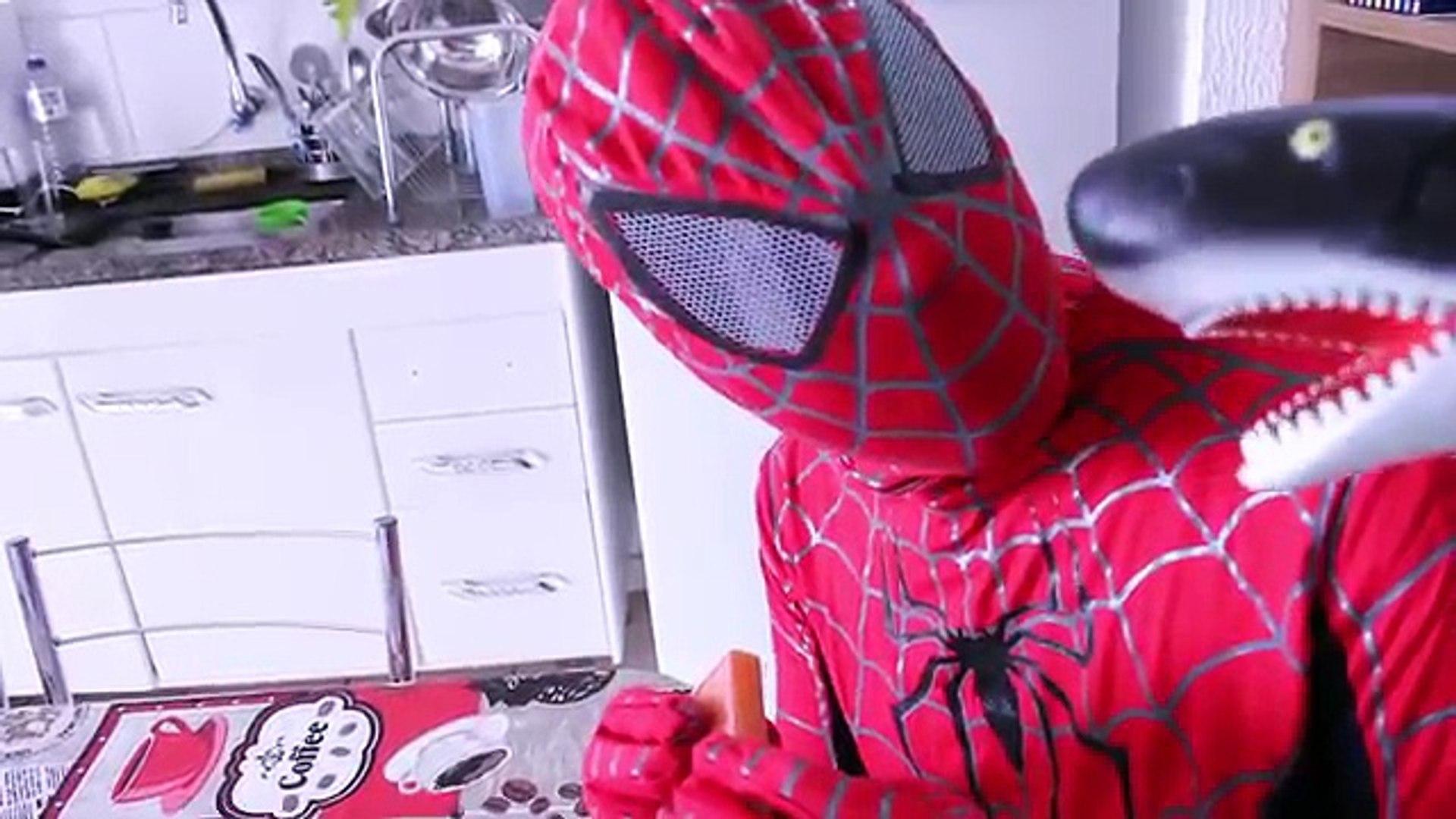 Spiderman and Frozen Elsa vs DINOSAUR & SHARK Attack w/BatMan Funny Superheroes in Real Life Pra