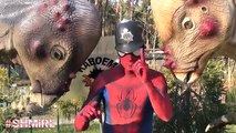 SPIDERMAN & HULK Dinosaur FART PRANK fun Dinosaurs T-Rex BABY - Superhero Fun in Real Life - SHMIRL
