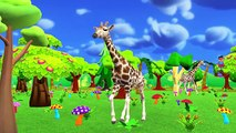 Animals Wheels On The Bus Go Round And Round Rhymes | Animals Sounds Finger Family Rhymes