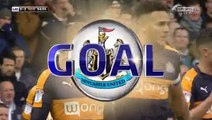Dwight Gayle Goal HD - Leeds0-2Newcastle Utd 20.11.2016