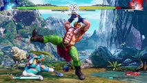 LetsPlay: STREET FIGHTER V Survival Mode Alex Playthrough (Easy)