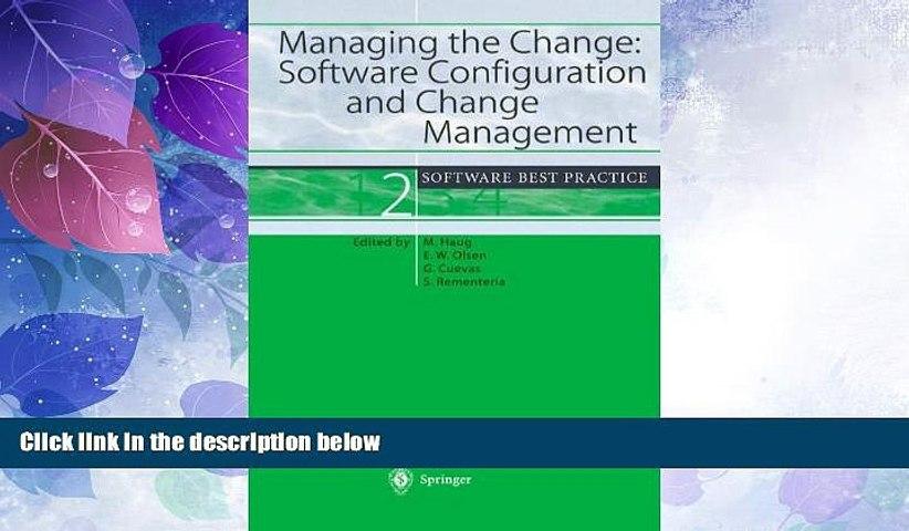 Big Sales  Managing the Change: Software Configuration and Change Management: Software Best