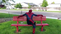 Spiderman and Blue Spiderman In Real Life Spiderman Goes Skateboarding