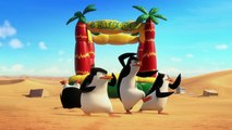 Penguins Of Madagascar - Cheezy Dibbles Ad - International English