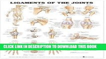 [PDF] Ligaments of the Joints Anatomical Chart Popular Collection