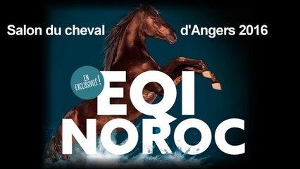 Salon du cheval d'Angers : Equi Noroc