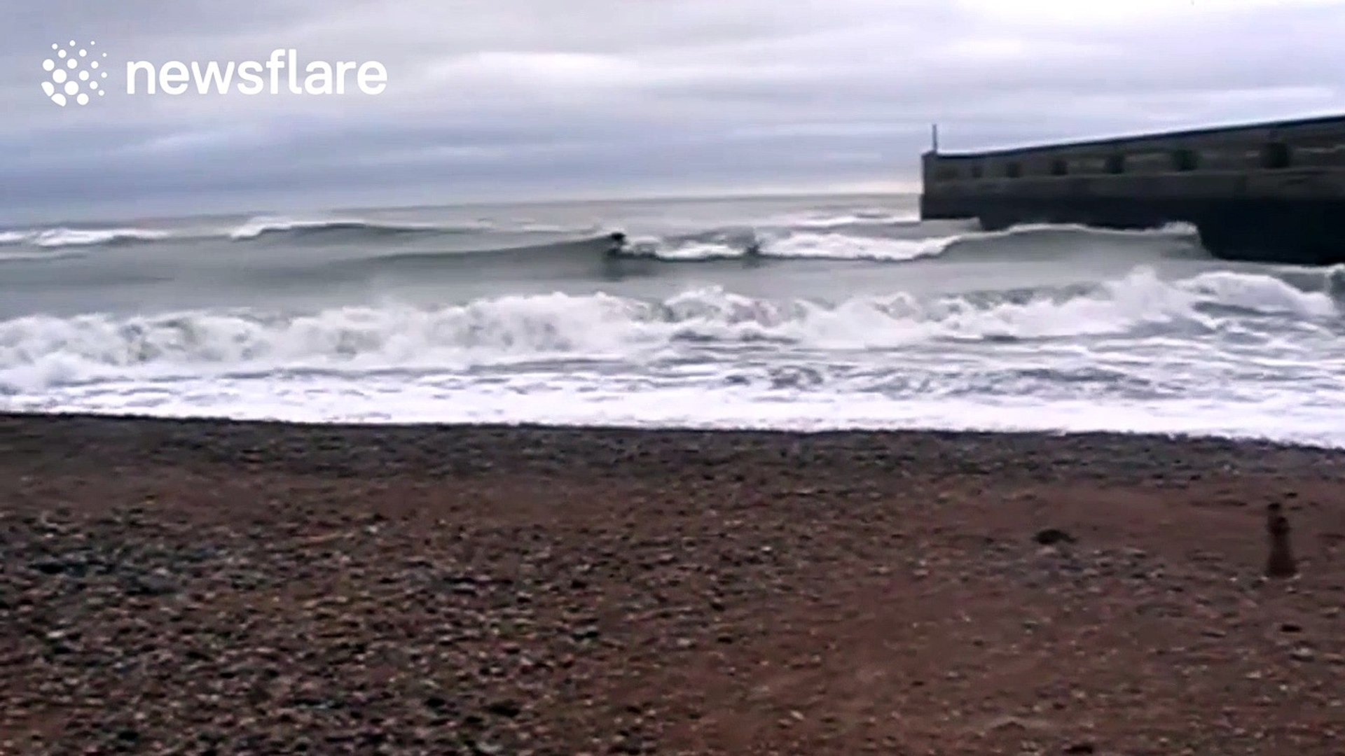 Surfers ride waves off Brighton coast during Storm Angus