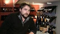 Projet : Un vignoble sur l'île de Groix (Morbihan)