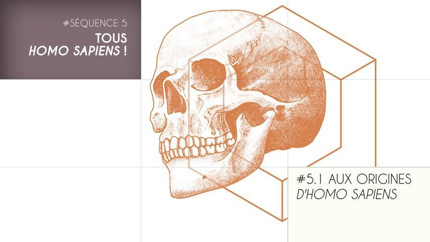 MOOC Les origines de l'Homme - Sujet 5.1 : Aux origines d'Homo sapiens
