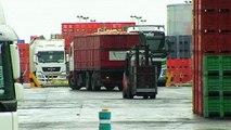 İspanya: İhracat zirve yaptı, dış ticaret açığı geriledi