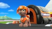 La Pat' Patrouille - Pups en francais - Alex SOS - Dessin animé Complet en Francais 2016