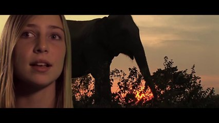 14 years old rescues wild elephants