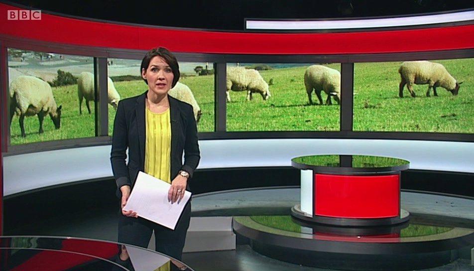 BBC1_BBC Wales Today 22Nov16 – livestock theft