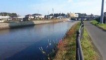 Un fort séisme provoque un tsunami près de Fukushima au Japon