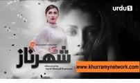 Shehrnaz - Episode 04 - Urdu1 - www.khurramynetwork.com