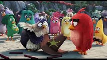 Angry Birds La Pelicula Trailer Final Español