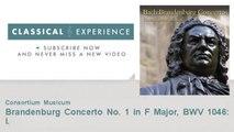 Johann Sebastian Bach : Brandenburg Concerto No. 1 in F Major, BWV 1046: I.