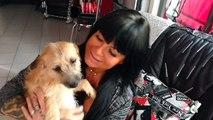 Huy: la coiffeuse Joëlle Parmentier, amoureuse des animaux, part en Roumanie sauver des chiens (1/2)