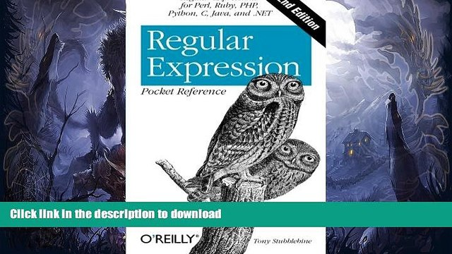 READ BOOK  Regular Expression Pocket Reference: Regular Expressions for Perl, Ruby, PHP, Python,