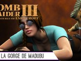 Épopée : Tomb Raider III ( part 25 )
