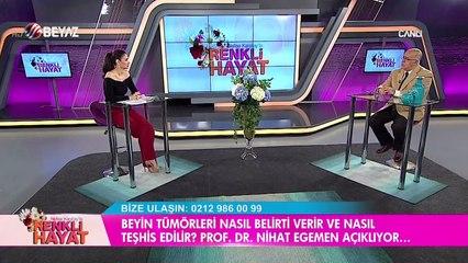 Nefise Karatay'la Renkli Hayat 26 Kasım 2016