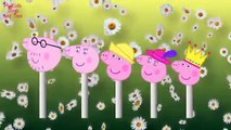280 LOLLIPOPS PEPPA PIG FINGER FAMILY SONG DADDY FINGER POPSICLE NURSERY RHYME MY KIDS SONGS & TOY