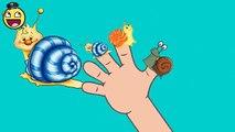 Nursery Rhymes Video | 2D Snails Finger Family | Finger Family Nursery Rhymes