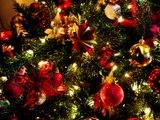 Vánoční koledy - Štědrej večer nastal, Narodil se Kristus Pán, Nesem Vám noviny, Tichá noc...