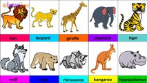जंगली जानवर - Wild Animals and Their Names - Wild