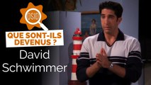 Que devient David Schwimmer (Ross Geller dans Friends) ?