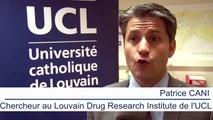 L'UCL dévoile une bactérie qui guérit de l'obésité et du diabète