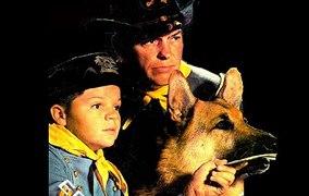 Las aventuras de Rin Tin Tin CAP 2