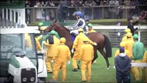 Horse Excellence: Japan Cup and Hong Kong Cup (Horse Racing)