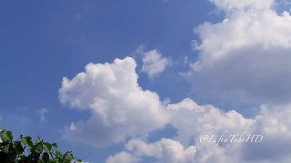 Slow Mo Clouds in The Blue Sky Slow Motions Photography