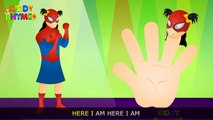 Finger Family Collection | Spiderman Finger Family (Spiderman Vs Hulk) Finger Family (Venom) Rhyme
