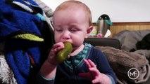 Ce bébé n'aime pas les cornichons mais n'arrête pas de manger