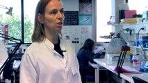Vidéo Métier : Technicien Supérieur de Recherche   V. Latournerie