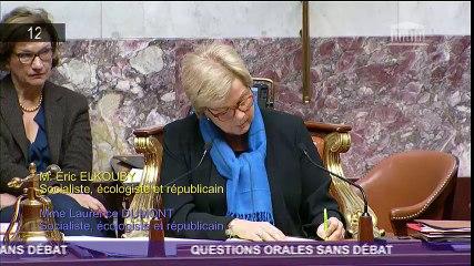 Question Orale sur les manoeuvres frauduleuses du FN aux élections municipales de GIBERVILLE 29 novembre 2016