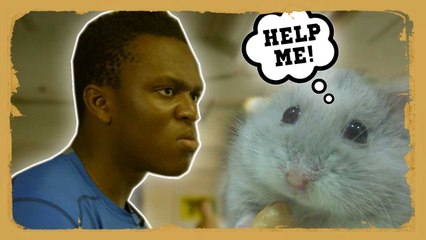 KSI battles his Hamster Demon!!!