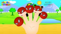 Finger Family Collection | Spiderman Finger Family (Spiderman Vs Venom) Finger Family Hulk