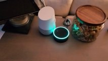 Faire planter en boucle 2 assistants personnels Echo et Alexa - Google vs Amazon