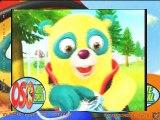 Video oso agente 3