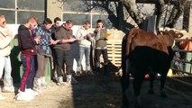Hautes-Alpes : Les jeunes agriculteurs de Chorges dans la peau de juges