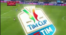 Goal HD - Bologna 2-0 Hellas Verona 01.12.2016 HD