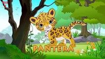 sonidos de animales para bebes en ingles | sonidos de animales para bebes en español | 4D #p6