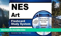 Online NES Exam Secrets Test Prep Team NES Art Flashcard Study System: NES Test Practice