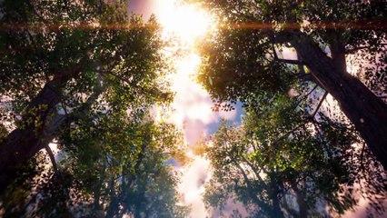 PSX 2016 Trailer de Horizon Zero Dawn