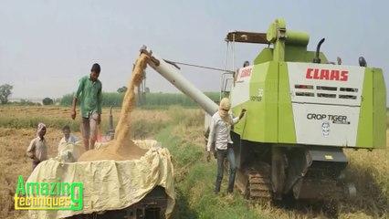 Crop Harvesting Machine│ Amazing Modern Crop Harvesting Technique