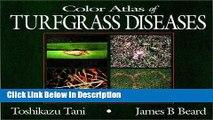 PDF Color Atlas of Turfgrass Diseases kindle Online free